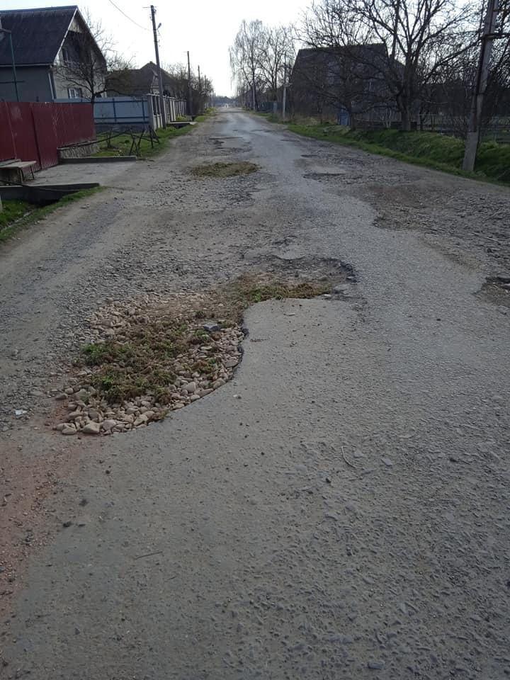 """""""Дожилися, коли дороги обл.значення ремонтуються травою. Просто жах!!!"""", - на Закарпатті """"освоюють"""" нові технології латання доріг (ФОТО)"""