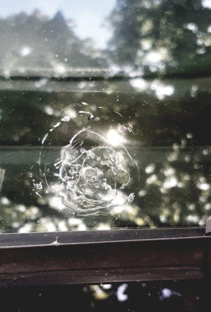 На Закарпатті цигани напали на медиків (ДЕТАЛІ. ФОТО)
